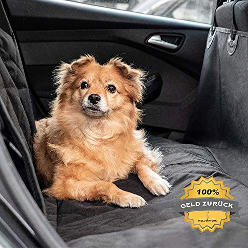 Heldenwerk® Autoschondecke Hund...