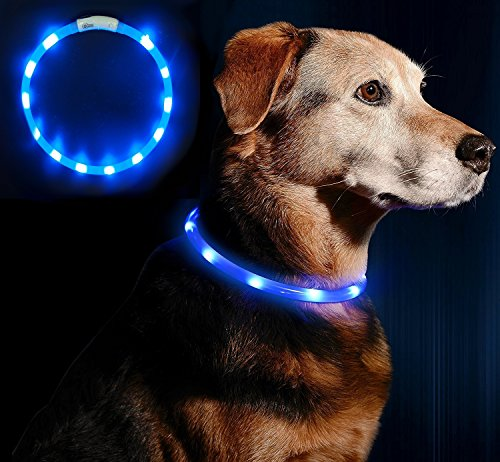 Anicoll LED Leuchthalsband Hunde...