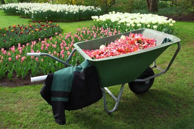 Geschenke für Gartenfreunde: 18 Ideen für Gartenbesitzer